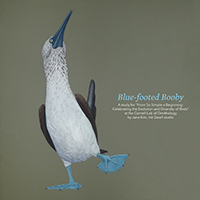 Blue-footed Booby by Jane Kim