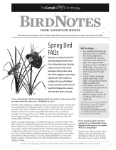 BirdNote19  Spring Bird FAQs 2012CS6 Page 1 resized 163