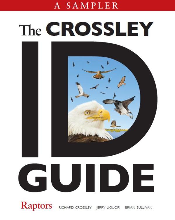 Crossley Guide Raptor.Cover resized 600
