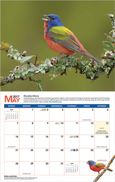 2017-calendar-may-spread-border_400px.jpg