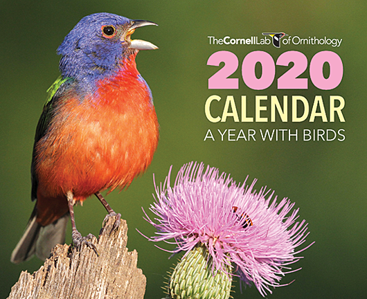 CLO 2020 A Year With Birds Calendar