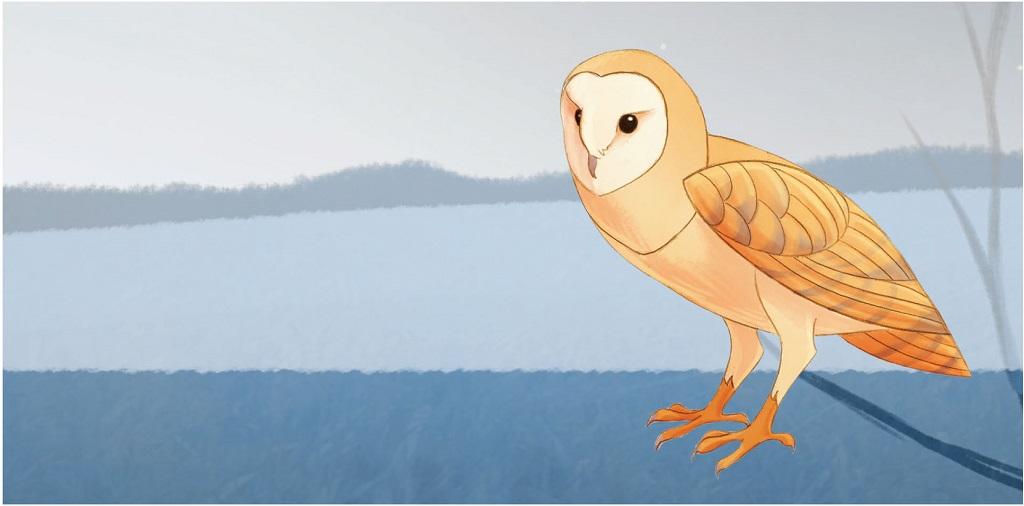Owl Pellet box label
