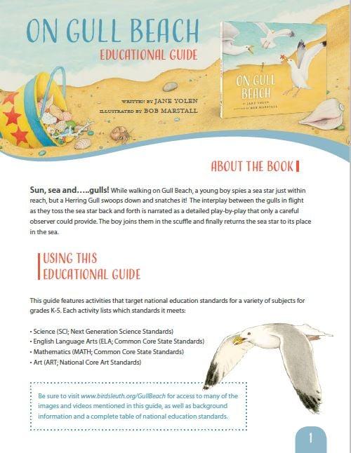 On Gull Beach Guide