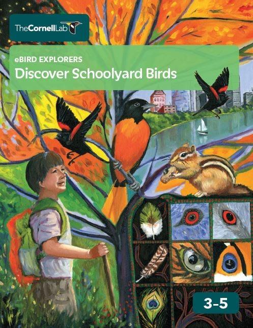 The Cornell Lab eBird Explorers Discover Schoolyard Birds 3-5 curriculum cover