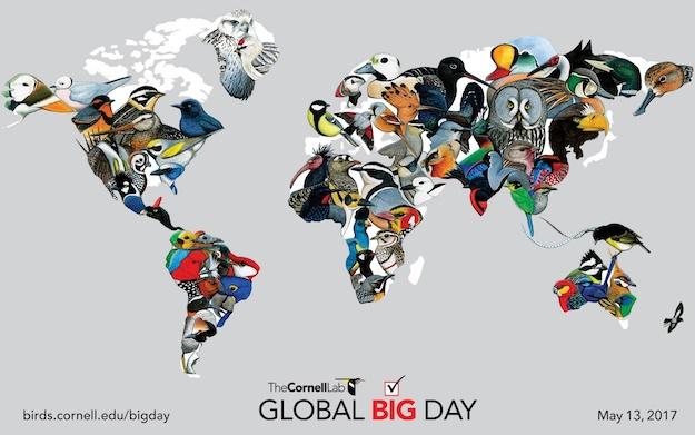 Cornell_Lab_Global_Big_Day_Map-625px.jpg