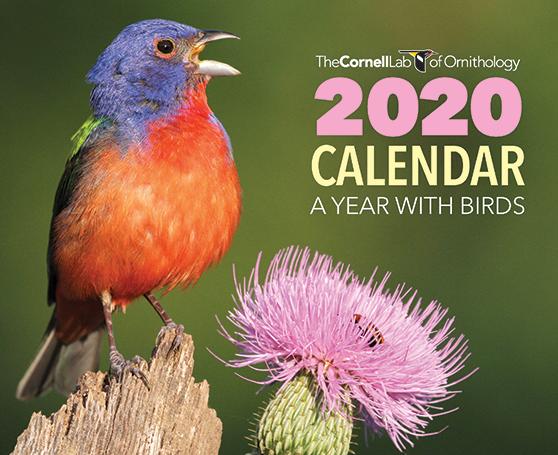 Receive the 2020 Cornell Lab Calendar